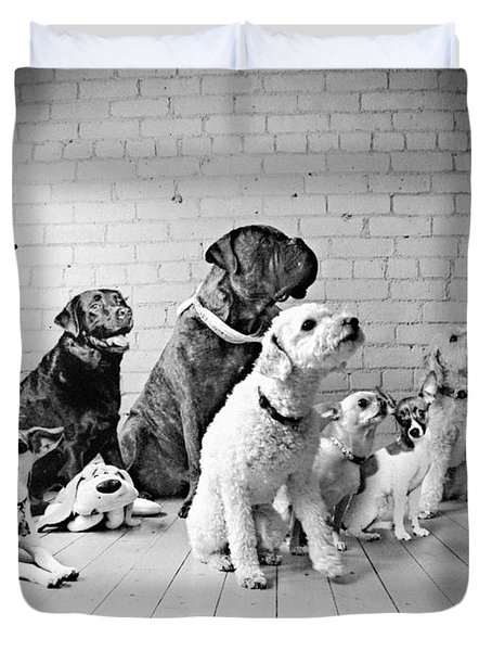 Dogs Watching At A Spot Duvet Cover by Sumit Mehndiratta