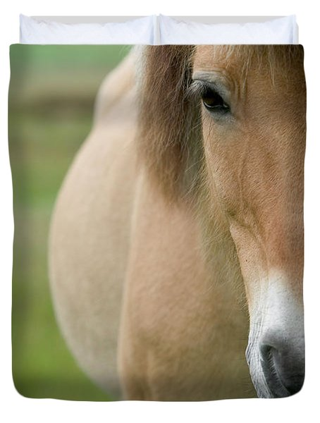 Domestic Horse Equus Caballus Portrait Duvet Cover by Cyril Ruoso
