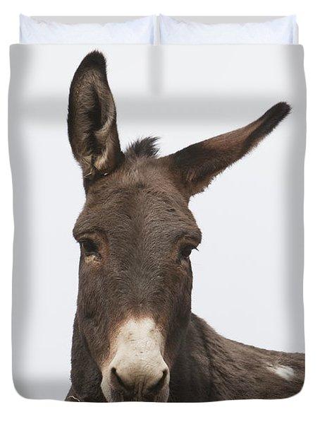 Donkey At The Hajigak Pass, Vardak Duvet Cover by Peter Langer