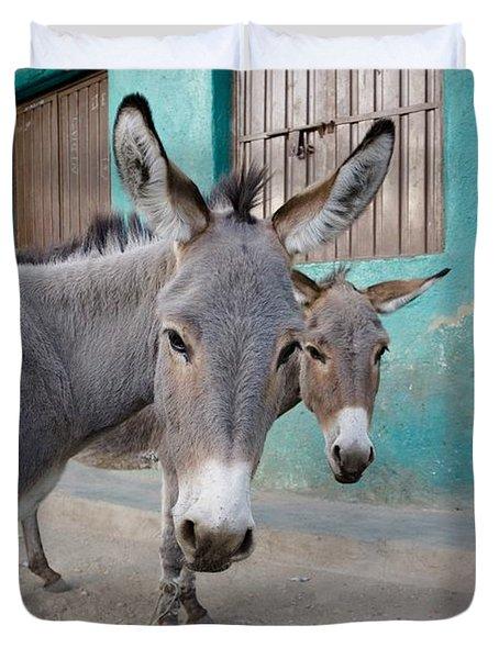 Donkeys, Harar, Ethiopia, Africa Duvet Cover by David DuChemin