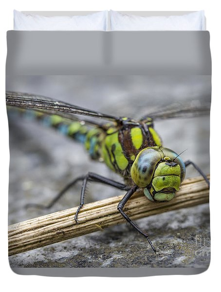 Duvet Cover featuring the photograph Dragonfly by Clare Bambers