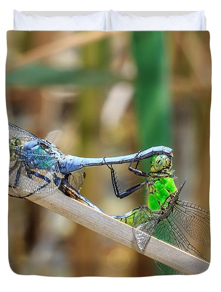 Dragonfly Love Duvet Cover by Everet Regal