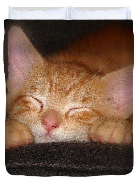 Dreaming Kitten Duvet Cover by Patrick Witz