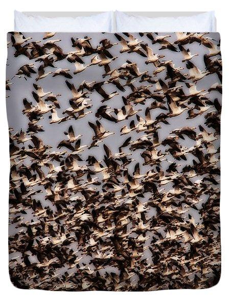 Duck Wall Duvet Cover