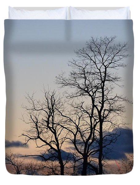 Dusk Duvet Cover by Bonnie Myszka