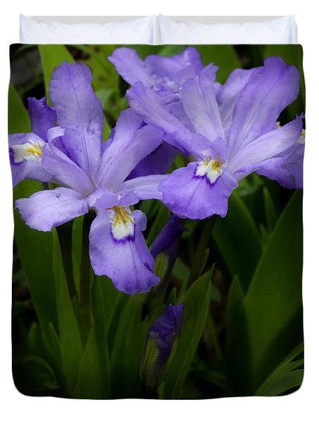 Dwarf Crested Iris Duvet Cover by Rob Travis