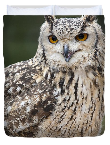 Eagle Owl II Duvet Cover