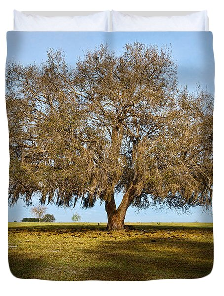 Early Morning Oak Duvet Cover by Christopher Holmes