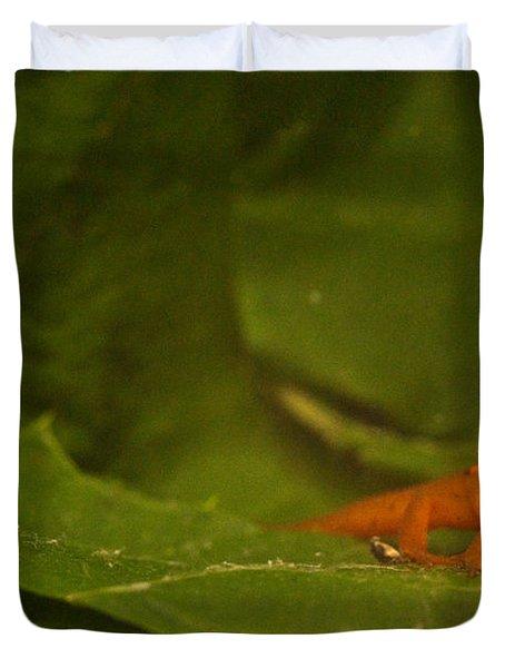 Easterm Newt Nnotophthalmus Viridescens 4 Duvet Cover