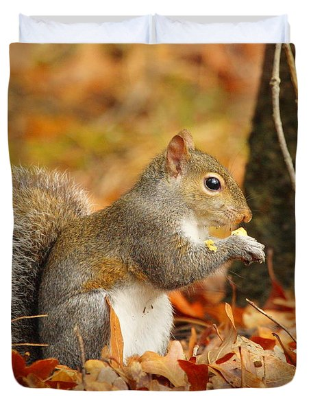 Eastern Grey Squirrel Duvet Cover by Andrew McInnes