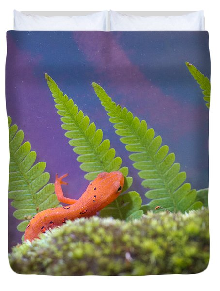 Eastern Newt 1 Duvet Cover