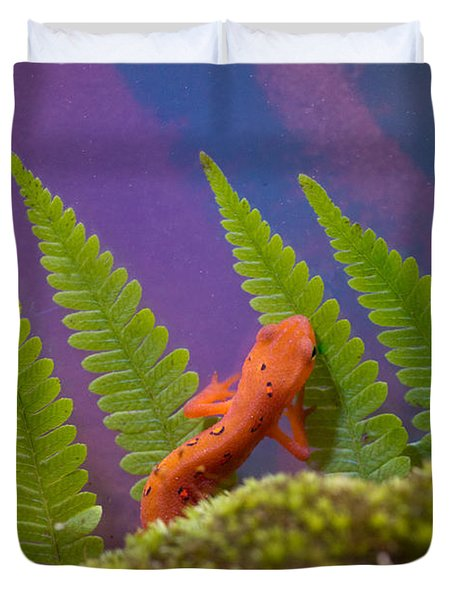 Eastern Newt 7 Duvet Cover