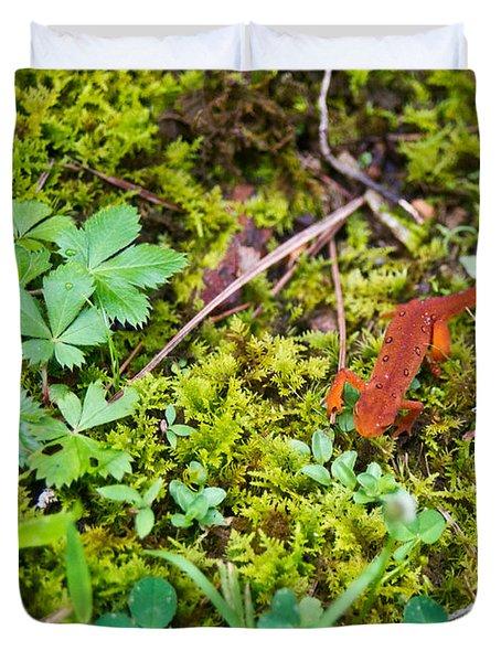Eastern Newt Juvenile 4 Duvet Cover