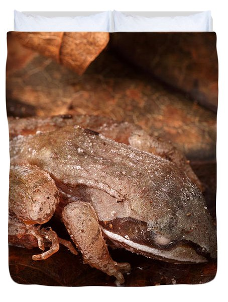 Eastern Wood Frog Hibernating Duvet Cover by Ted Kinsman