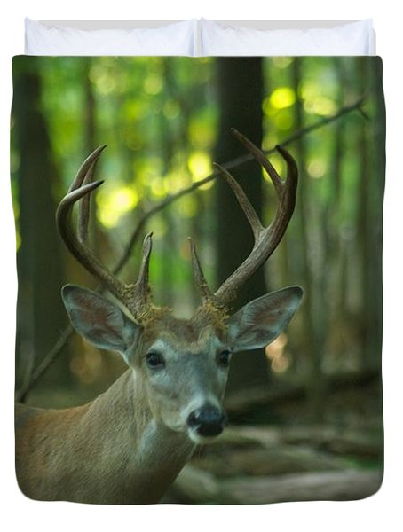 Eight Point_9531_4366 Duvet Cover by Michael Peychich