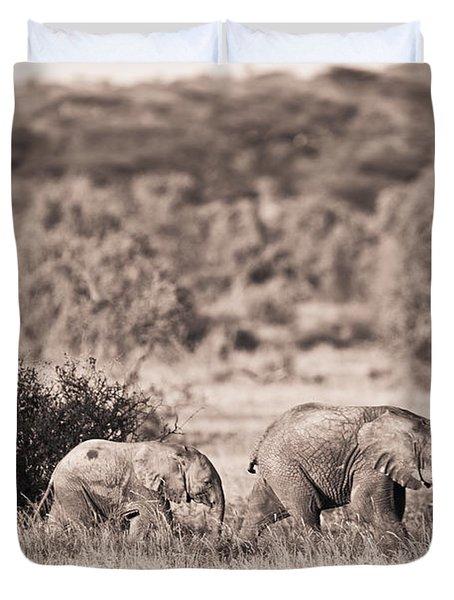 Elephants Walking In A Row Samburu Kenya Duvet Cover by David DuChemin