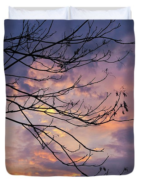Enchanted Evening Duvet Cover by Rachel Cohen