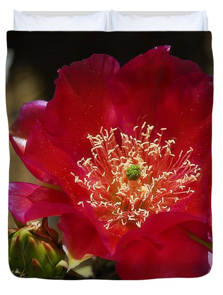 Englemann's Prickly Pear Cactus  Duvet Cover by Saija  Lehtonen