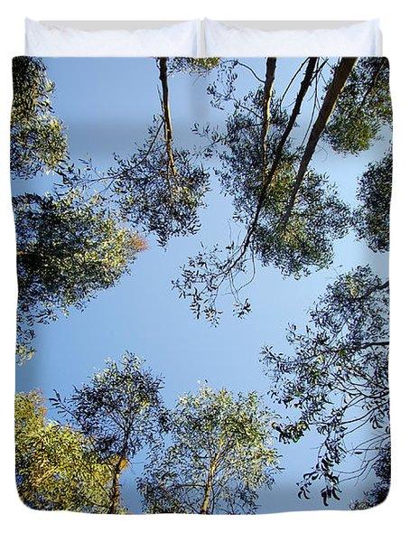 Eucalyptus Duvet Cover by Carlos Caetano