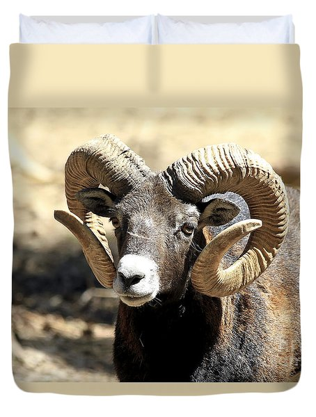 European Big Horn - Mouflon Ram Duvet Cover