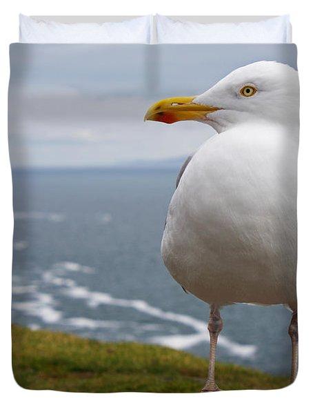 European Herring Gull Larus Argentatus Duvet Cover by Trish Punch