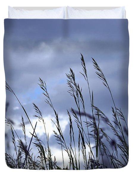Evening Grass Duvet Cover by Elena Elisseeva
