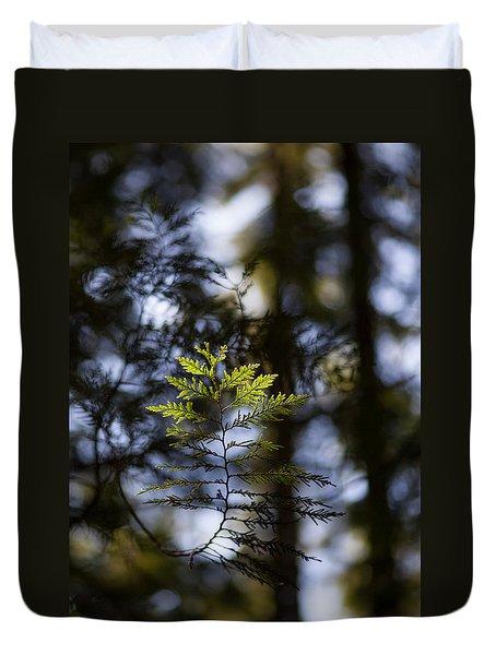 Evergreen Light Duvet Cover by Mike Reid