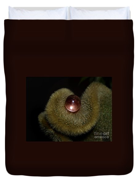 Duvet Cover featuring the photograph Eye Of The Cacti by Irma BACKELANT GALLERIES