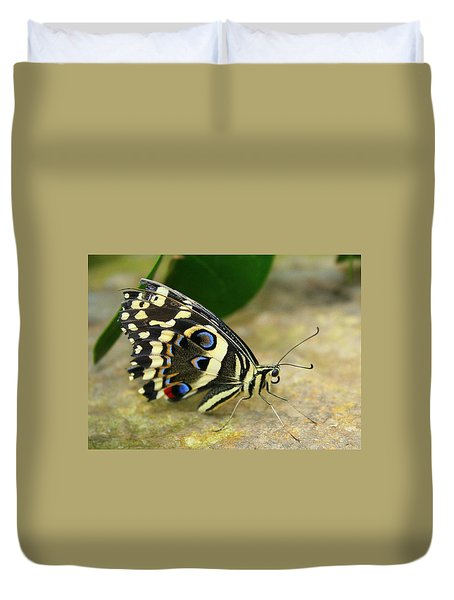 Eye To Eye With A Butterfly Duvet Cover