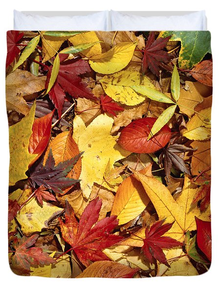 Fall  Autumn Leaves Duvet Cover