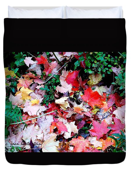 Duvet Cover featuring the photograph Fall Beauty by Joan Hartenstein