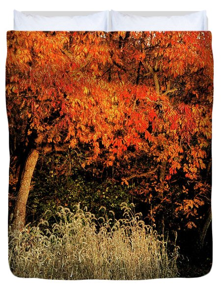 Fall Colors 2 Duvet Cover by Vilas Malankar