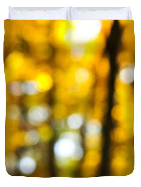 Fall Forest In Sunshine Duvet Cover by Elena Elisseeva