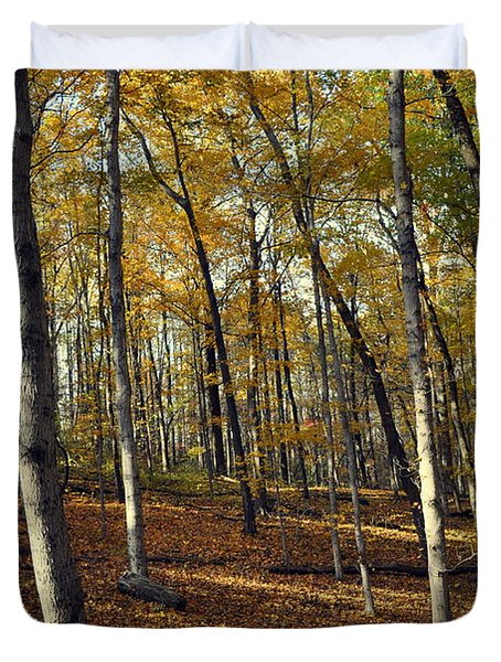 Fall In The Forest 1 Duvet Cover by Marty Koch
