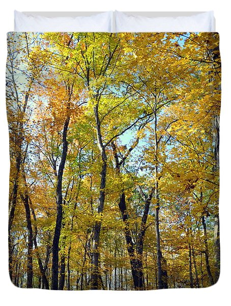 Fall In The Forest 2 Duvet Cover by Marty Koch