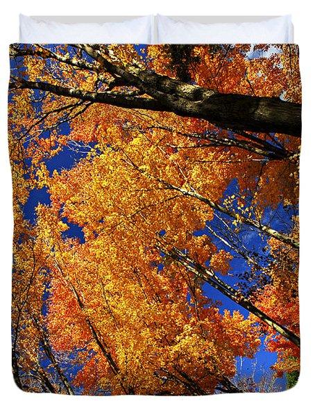 Fall Maple Treetops Duvet Cover by Elena Elisseeva