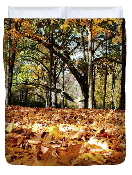 Duvet Cover featuring the photograph Fall On The Ground by Rachel Cohen