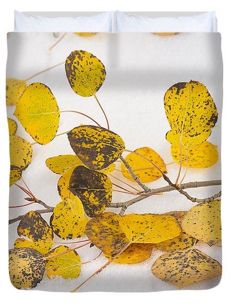 Fallen Autumn Aspen Leaves Duvet Cover by James BO  Insogna