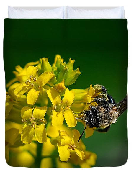 Fanfare For The Common Bumblebee Duvet Cover by Lois Bryan