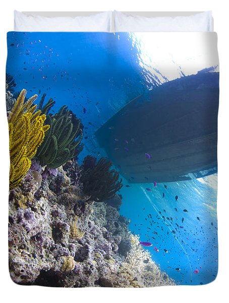 Feather Stars With A Boat Duvet Cover