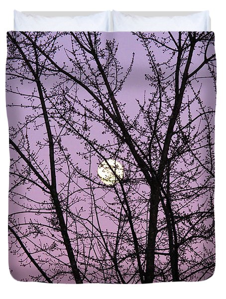Duvet Cover featuring the photograph February's Full Moon by Rachel Cohen