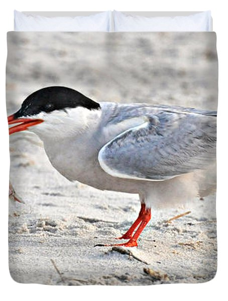 Feeding Time Duvet Cover by Dave Mills