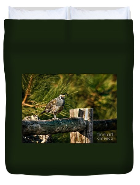 Fence Rider Duvet Cover by Robert Bales