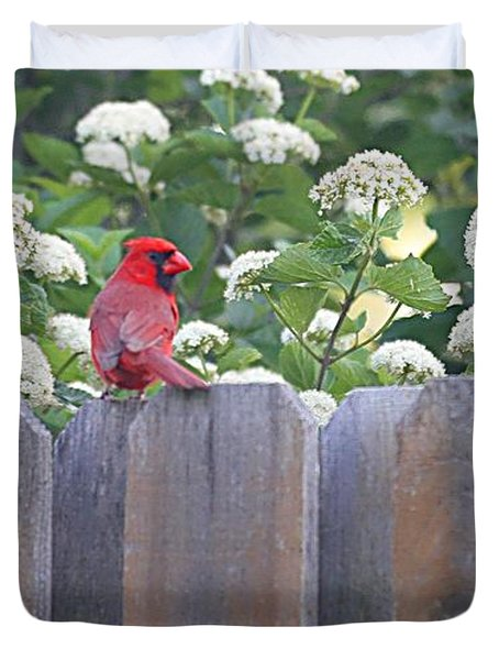 Duvet Cover featuring the photograph Fence Top by Elizabeth Winter