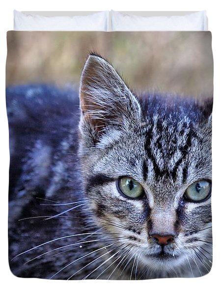 Duvet Cover featuring the photograph Feral Kitten by Chriss Pagani