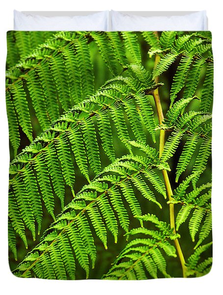 Fern Fronds Duvet Cover by Carlos Caetano
