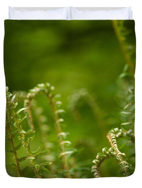 Ferns Fiddleheads Duvet Cover by Mike Reid