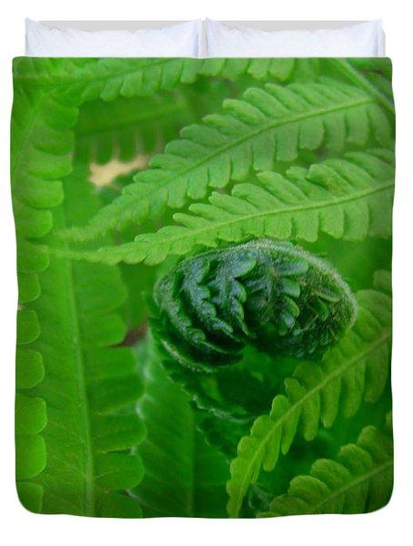 Ferns Fine Art Prints Green Forest Fern Duvet Cover by Baslee Troutman