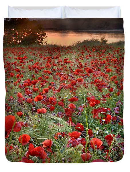 Field Of Poppies Duvet Cover by Guido Montanes Castillo