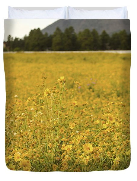 Field Of Yellow Daisy's Duvet Cover